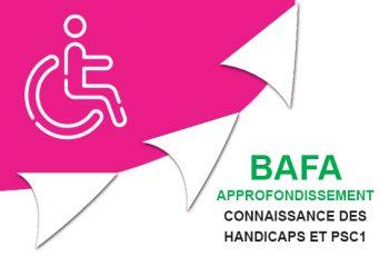approfondissements connaissance des handicaps
